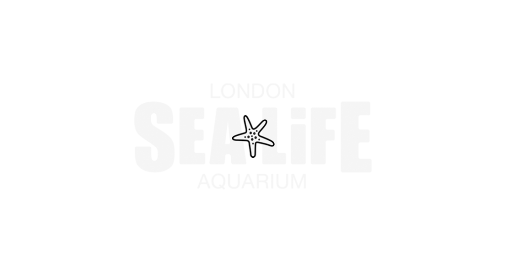 Sealife Portfolio Logo Left